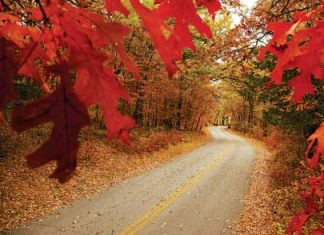 5 Fantastic Fall Drives in Minnesota | Minnesota Monthly