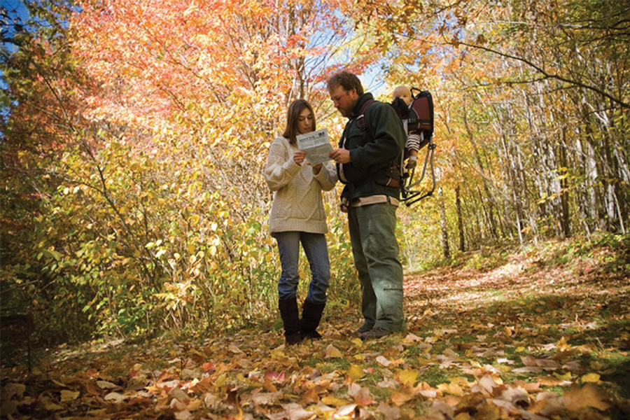 A woman and a man with a baby strapped to his back are standing in the middle of a forest in autumn and looking down at a guide in their hands.