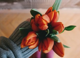 Someone in a blue sweater holding a vibrant bunch of orange tulips. https://unsplash.com/photos/5sSEUSZStvg