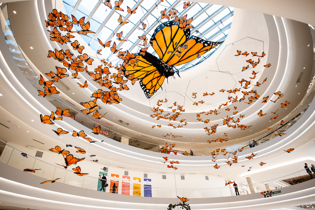 """Mall of America's new art installation, """"Kaleidoscope"""" by Christopher Lutter-Gardella, was unveiled on Earth Day 2019 in hopes to raise awareness about the importance of pollinators. The 30-foot monarch and 300 surrounding ones are made of reclaimed materials including more than 700 coat hangers, 600 tasting spoons, 100 yards of window screen material, and more."""