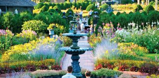 A couple walk through manicured flower beds and water features in the Munsinger Clemens Gardens.