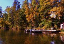 Grand Rapids Fall Colors at the Loon Resort