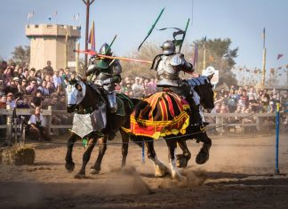 Jennifer Arocha - Clashing Knights