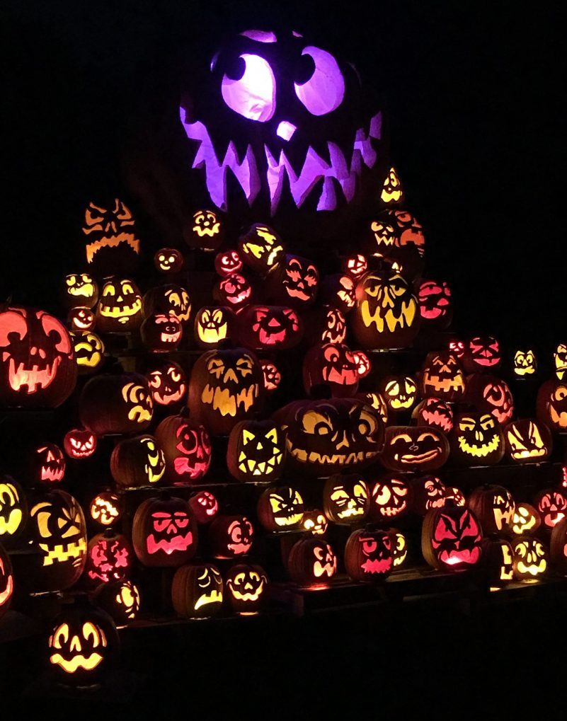 Through Passion for Pumpkins, anyone can reach out to become a contributing artist