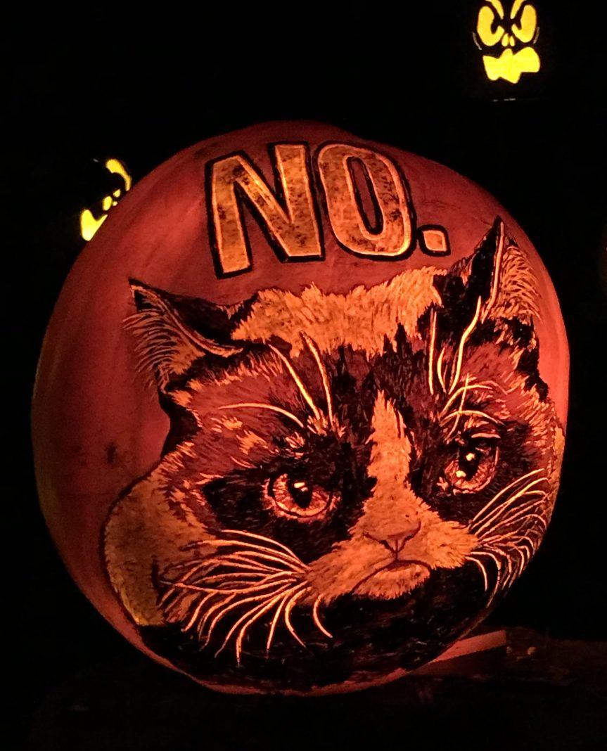 Grumpy Cat—R.I.P.