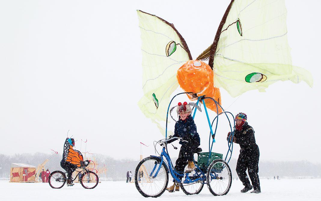 Monarch Migration Shanty soars again in 2020