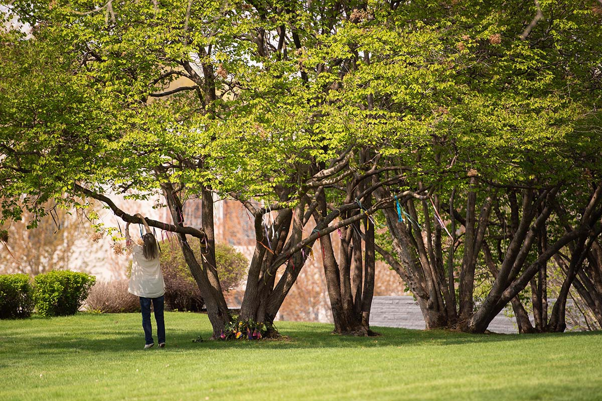 Woman ties ribbon to Lakewood Cemetery's Living Memory Tree, a tradition also available on Memorial Day