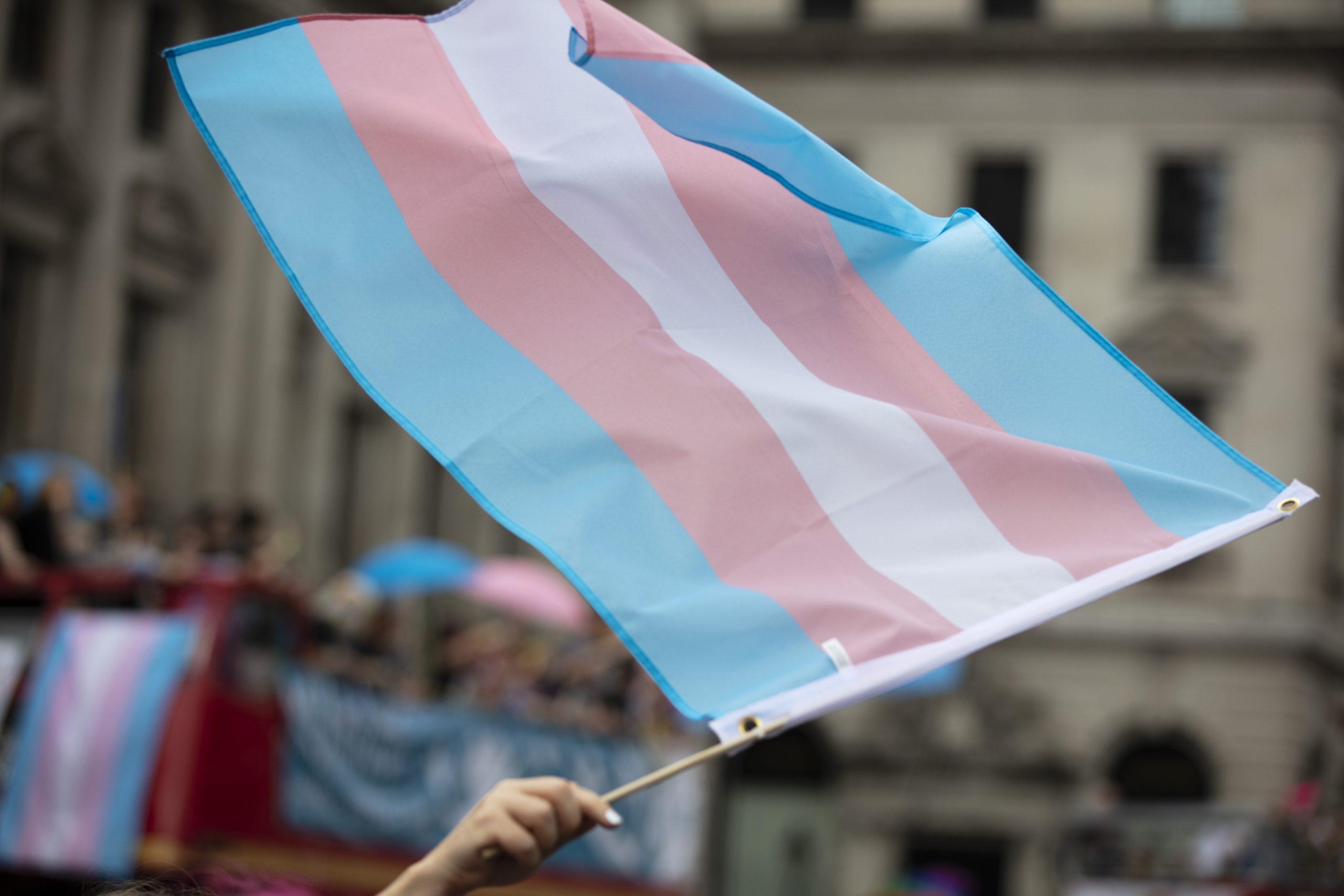 A transgender flag waved at LGBTQ Pride march